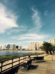 praia Punta
